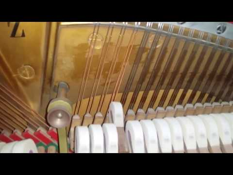 Assessment of Steinway model Z 115cm upright piano 1969 vs Welmar and Knight
