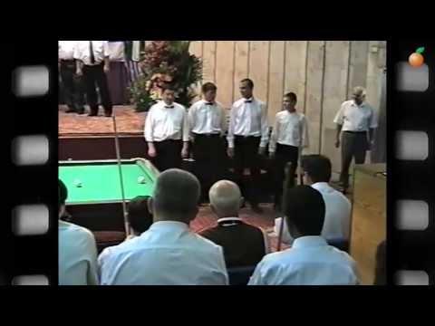 История бильярда (Абрикос №13)