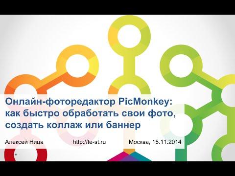 Онлайн-фоторедактор PicMonkey: как быстро обработать фото или создать постер, баннер или коллаж