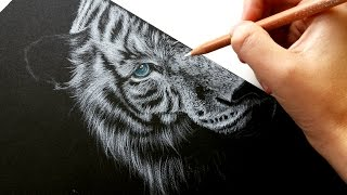 How to draw white fur on black paper-colored pencil | Leontine van vliet