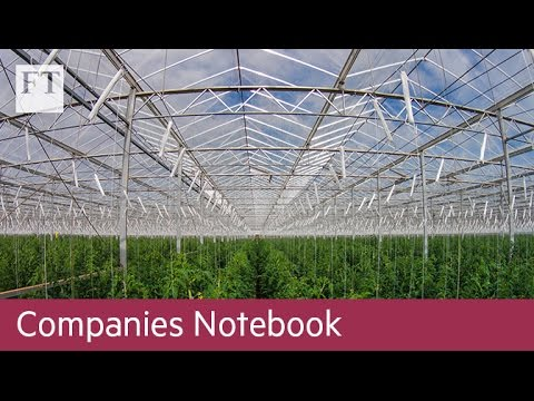 Can hi-tech greenhouses feed the world? I Companies Notebook