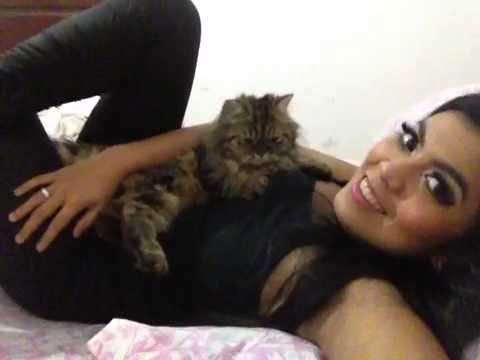 Relax with my cat – bubu