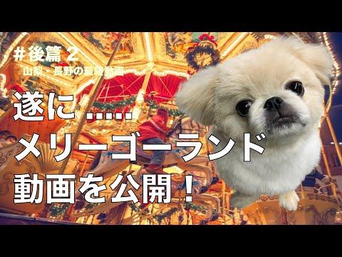 【犬と旅行】GO TO トラベルを使ってペキニーズのマール君と旅行してきた!#後篇2