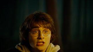 Хагрид показывает Гарри Поттеру драконов / Гарри Поттер впервые видит драконов