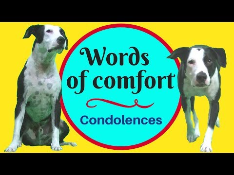 Words Of Sympathy And Comfort - Expressing Condolences In English