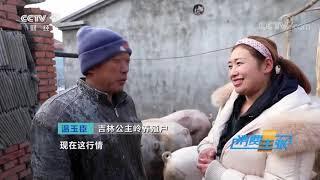 《消费主张》 20191224 原产地访价格:猪肉价格为何下降?  CCTV财经