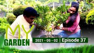 My Garden | Episode 37 | 02 - 05 - 2021 | Siyatha TV