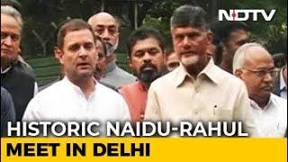 Have To Defend Democracy, Says Rahul Gandhi After Meeting Chandrababu Naidu