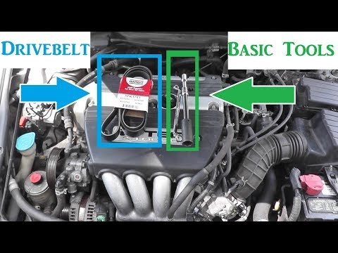 Honda Accord Serpentine or Drive Belt Replacement with BASIC Hand Tools