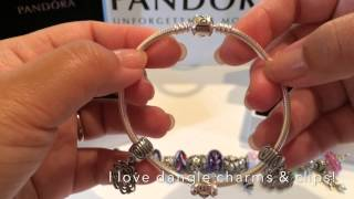 My Pandora Bracelet & Necklace Thumbnail