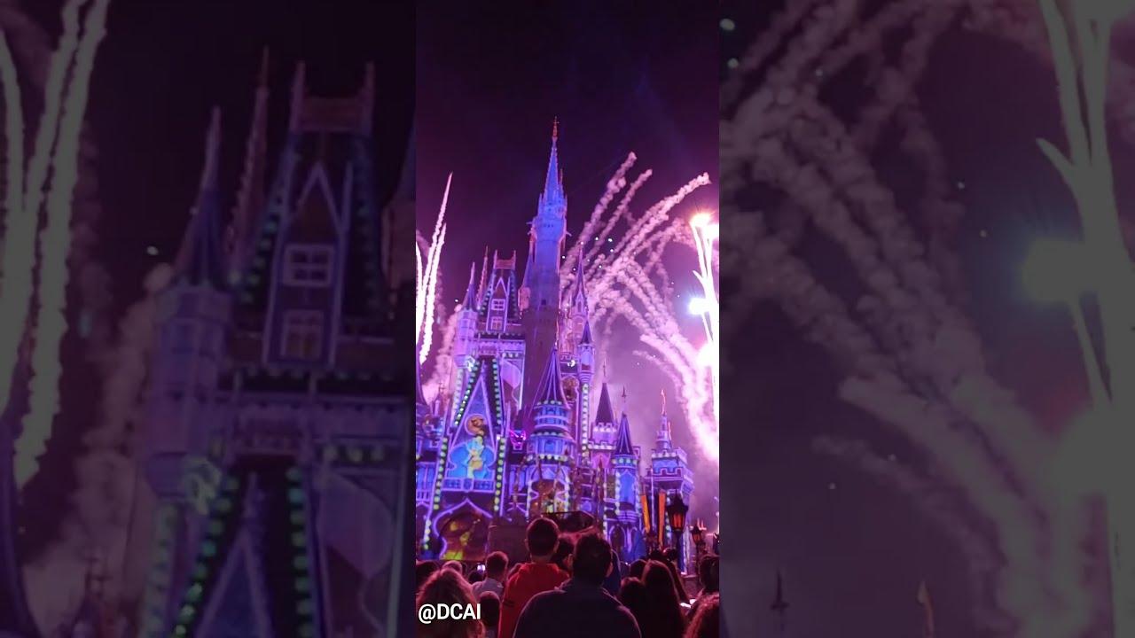 Highlight of our Magic Kingdom Disneyworld visit last November
