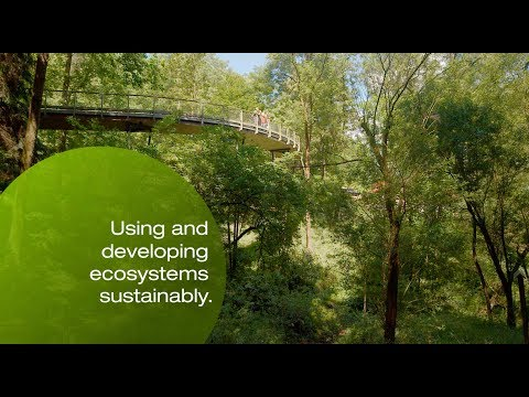 Creating a future worth living in – Civil and Environmental Engineering