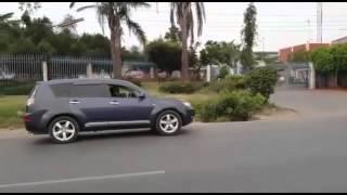 شاهد.. أسد يمشي في الشارع قبل مهاجمة رجل مسن