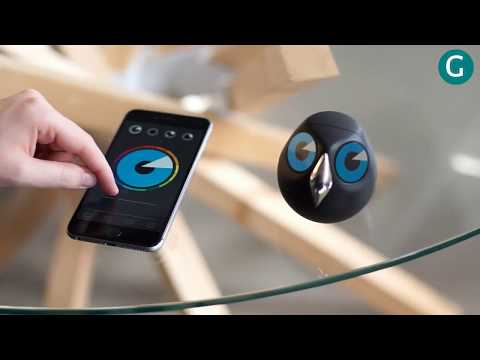 Unbelievable cute surveillance camera  | ULO
