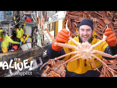 Brad Goes Crabbing In Alaska (Part 1) | It's Alive | Bon Apptit