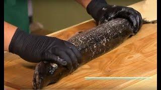 Как снять шкурку с рыбы для фарширования: мастер-класс