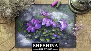 How to draw Petunia with soft pastels 🎨 Flowers