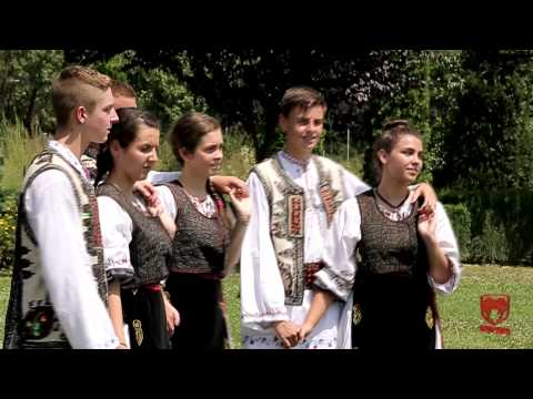 Calin Crisan - Blestemata-i mandra mea (Video nou 2014)