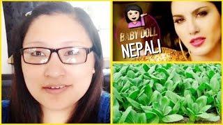 Nepali Baby Doll, My Prescription Glasses,Yummy Dahi Chura, Mosquito Bite & More Gardening!
