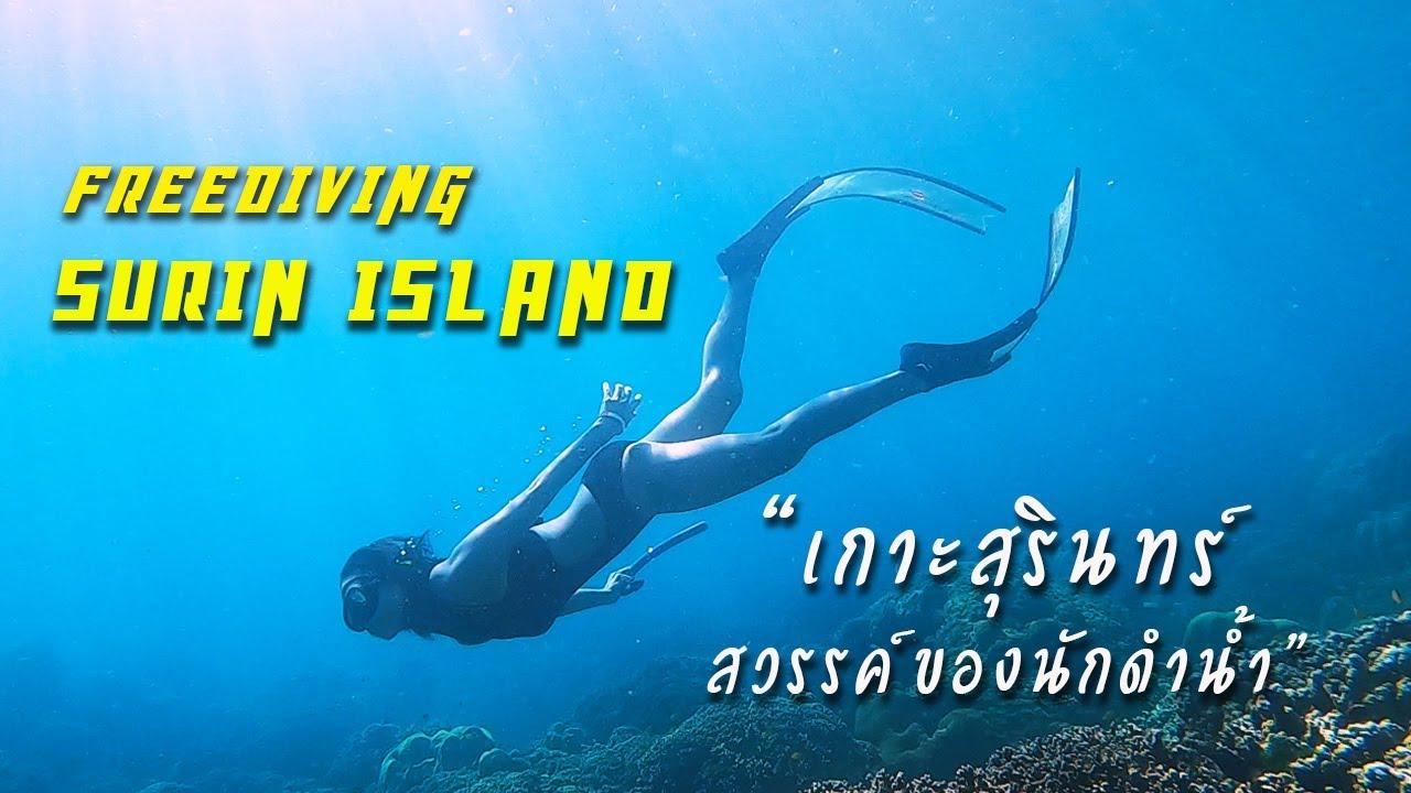 สวรรค์ของนักดำน้ำ หมู่เกาะสุรินทร์ จุดดำน้ำตื้นที่สวยที่สุดในไทย Freediving Surin Island