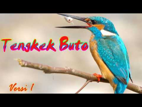 Download Suara Masteran Tengkek Buto Versi 1