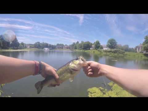 RETURN TO THE DEATH THREAT SPOT!! (Bass Fishing in Doylestown, PA)