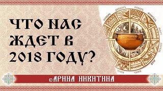 Арина Никитина: Что нас ждет в 2018 году