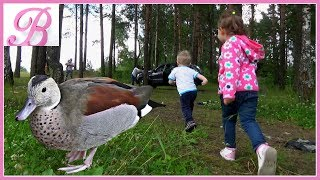 ВЛОГ ! Дашуля грає в іграшки на природі і годує качок ! Приїхала в гості до одного Саше