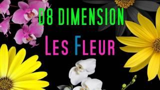 D8 Dimension -  Les Fleurs (Minnie Riperton cover)
