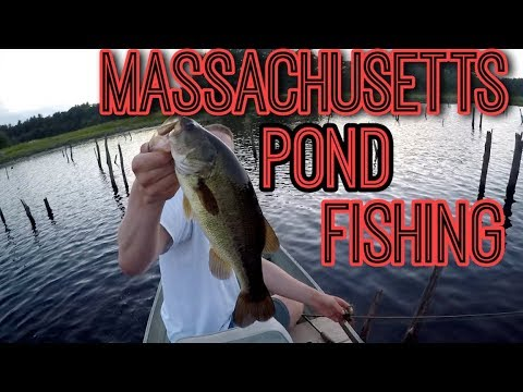 Massachusetts Pond Fishing