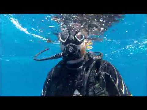 Yucatan Dive Trip 2016