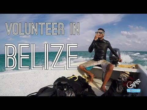 Marine Conservation Volunteering In Belize