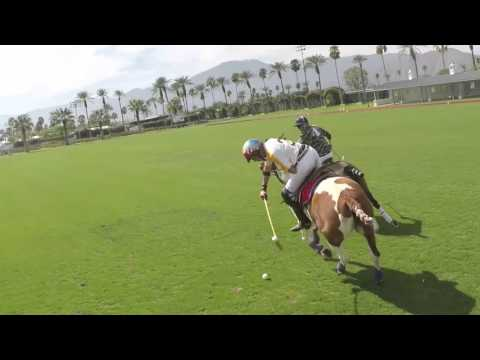 Polo - The Gentlemans' Sport