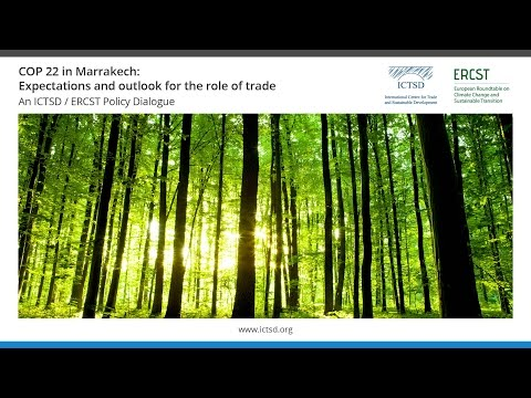 COP 22 in Marrakech: Expectations and outlook for the role of trade