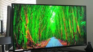 """TechTalk: LG 32UL950-W 32"""" Nano-IPS 4K UHD LED Monitor with Thunderbolt 3"""