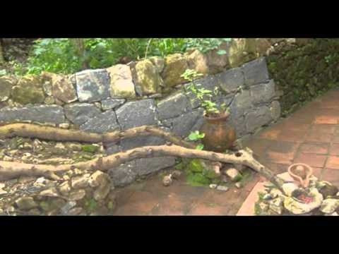 India Tamilnadu Yercaud Lake Forest India Hotels India Travel Ecotourism Travel To Care