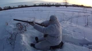 Охота на лису на переходе