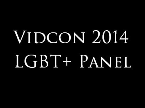 Vidcon 2014 LGBT+ Full Panel