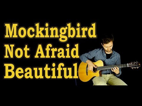 Eminem - Fingerstyle guitar - (Beautiful, Mockingbird, Not Afraid, Till I Collapse) + TABS