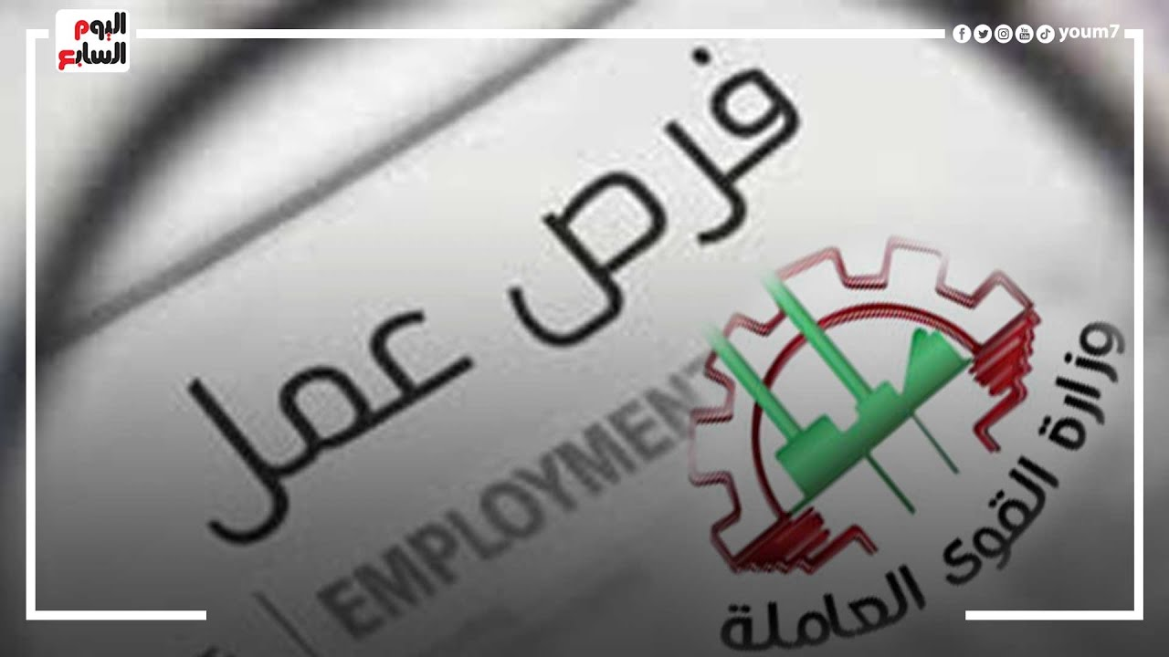 القوى العاملة توفر (1600) وظيفة فى مختلف المجالات بمرتبات تصل إلى 5 آلاف جنيه  - 10:55-2021 / 10 / 18