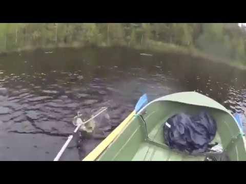 вот это щука лодку потопил :: VideoLike
