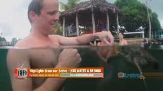 Swim with Turtles in Savaii Samoa 2013, Travel Video Guide