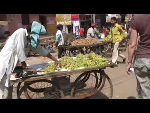 India - The Golden Triangle - Travel Video