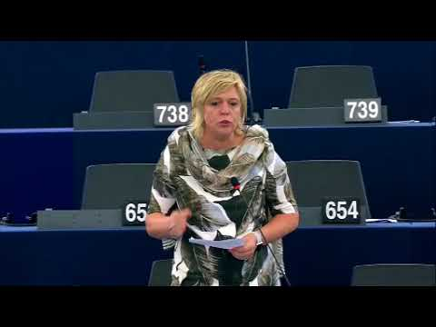 Hilde Vautmans 29 May 2018 plenary speech on Gaza Strip