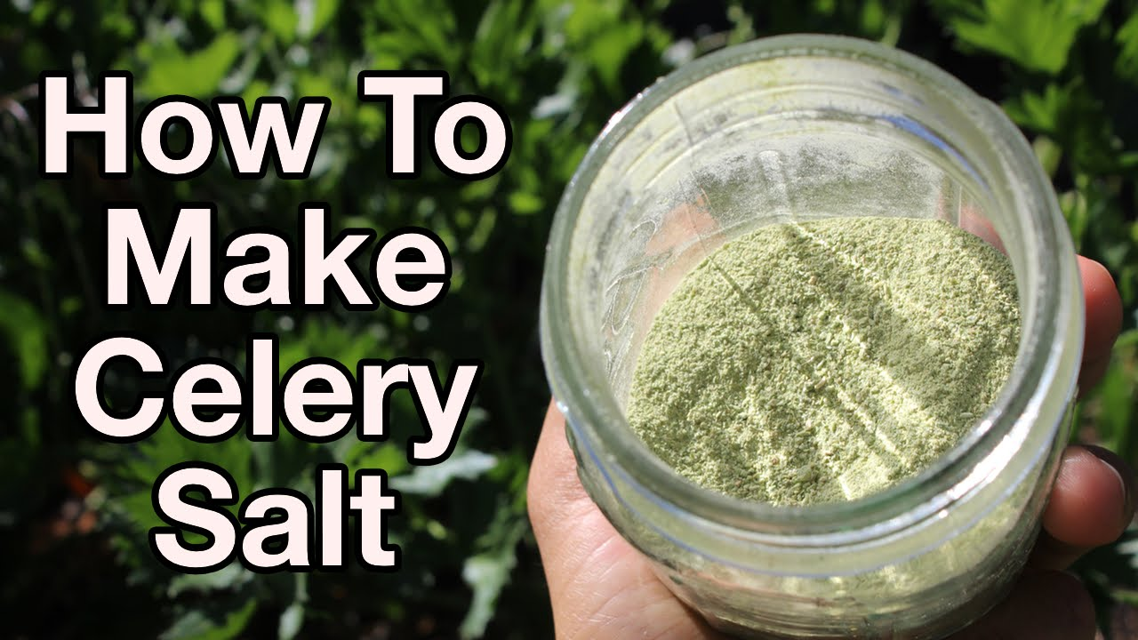Celery Salt Substitutes The 4 Best Options Cuisinevault