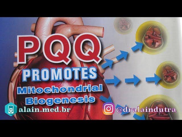 Conheça um dos mais poderosos antioxidantes da natureza - o PQQ