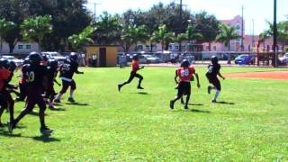 BETTER EVERY DAY!!! Sarasota Seminole Pee Wees - #1 Brian Battie TD trot!