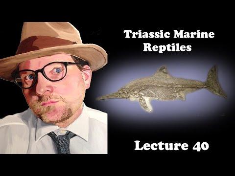 Lecture 40 Triassic Marine Reptiles