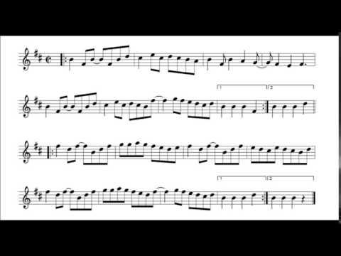 The Viking Set (irish flute - three reels)