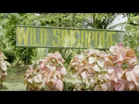 Singapore's Kranji Countryside | SilverKris | Singapore Airlines